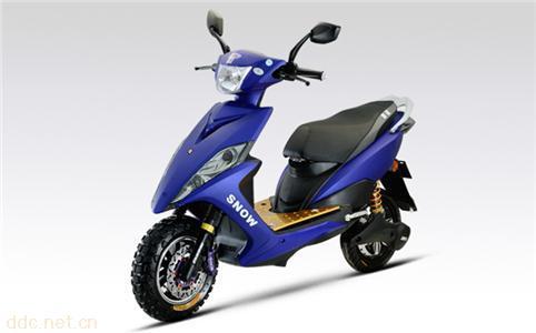 狮龙电动自行车H2