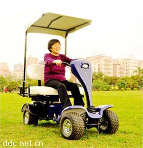 双人座老年代步电动车