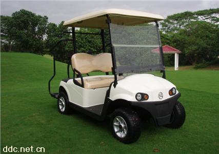 2座电动高尔夫车