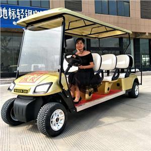 傲森8人座电动高尔夫球车