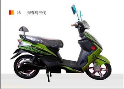 天津泰丰小鸟电动车业有限公司