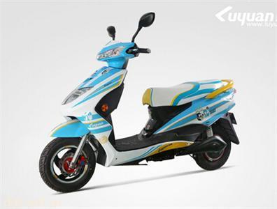 绿源电动自行车MN-CS6020-G1世界杯韵鹰