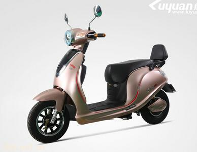 绿源电动自行车云豪MS-B4820-Z1