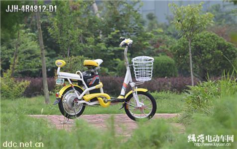 绿源电动自行车翼乐JJG-4R4812-D1
