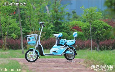 绿源电动自行车LFU-4T4812-Z1