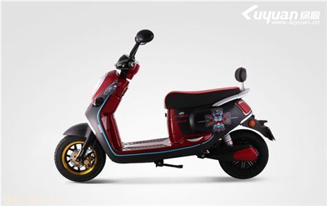 绿源电动自行车G-时代骑士安全王-时尚