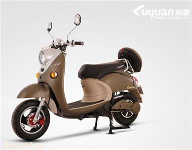 绿源电动自行车欧陆2G-CS6020-G3Z