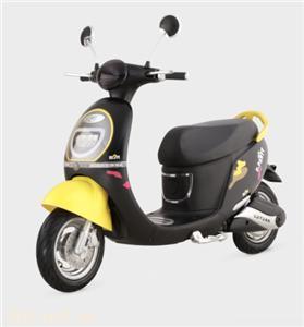 綠源V5電動自行車