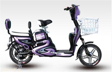 赛克电动自行车蝴蝶车-追风-B