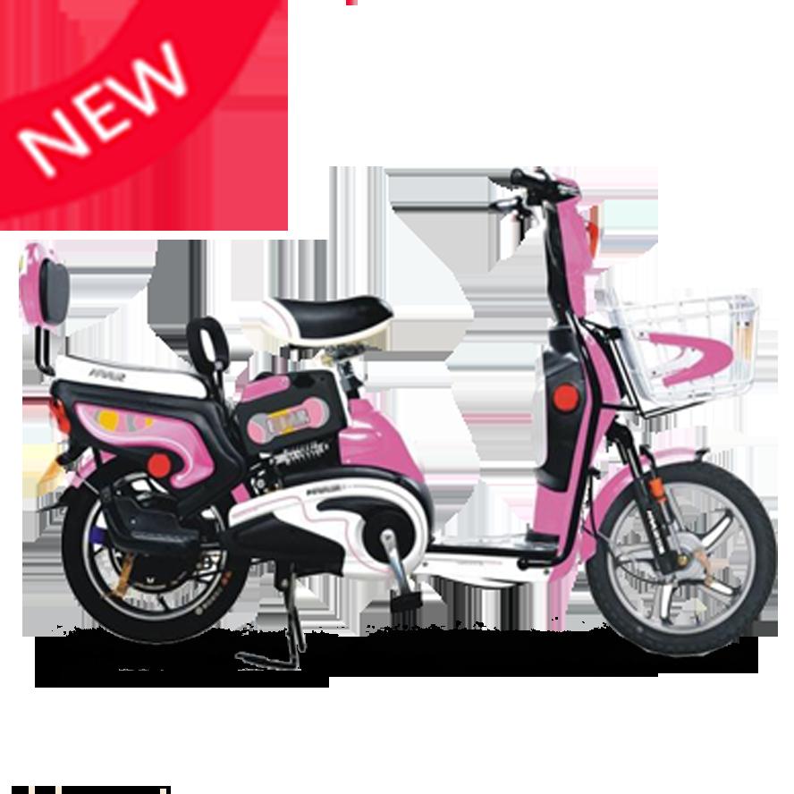 新日飞扬1 1升级电动自行车