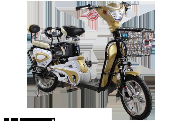 宝岛电动自行车玉玲