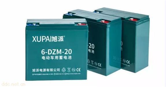 旭派6-DZM-20标准版电池