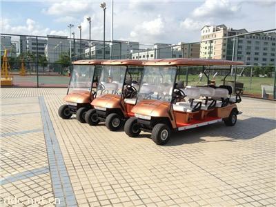 8座电动高尔夫球车AEG106A+2