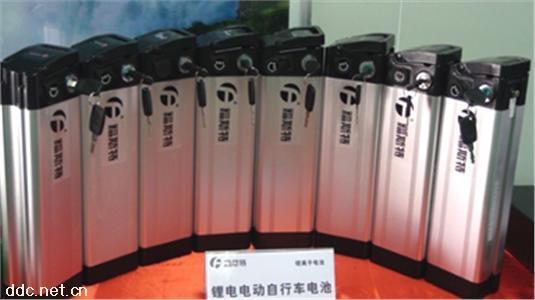 长江福斯特电动自行车电池