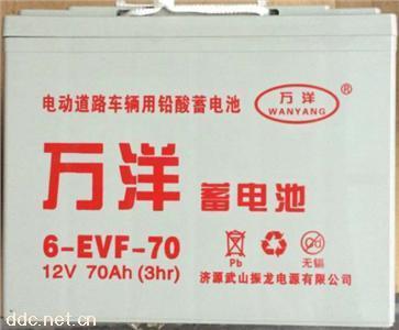 万洋 动力型 铅酸 免维护蓄电池