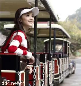 香港新能源电动观光小火车