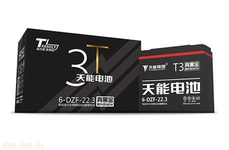 天能铅酸动力电池T3系列电动自行车电池